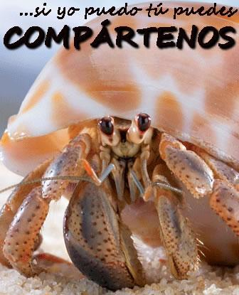 CANGREJOPEDIA » Cangrejos. Enciclopedia Ilustrada